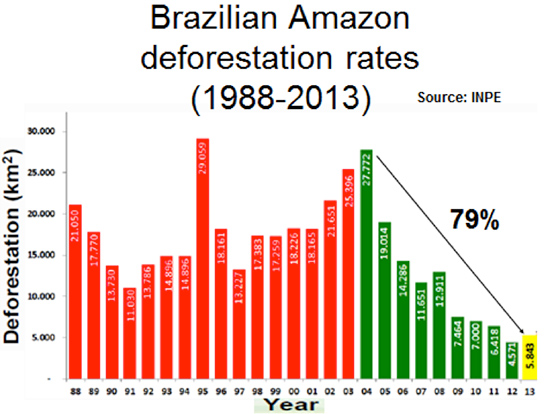 "the history of deforestation and its devastation in brazil Amazon deforestation, once tamed, comes roaring back a decade after the ""save the rainforest"" movement captured the world's imagination, cargill and."